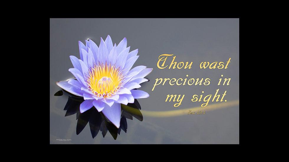 Thou wast precious