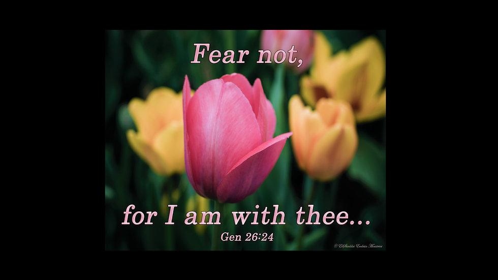 Fear Not... Gen 26:24