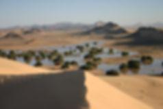 algeria erg tihodaine