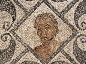 Mosaici tunisia romana archeologica