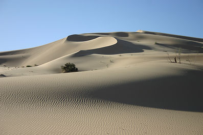 tour deserto algeria