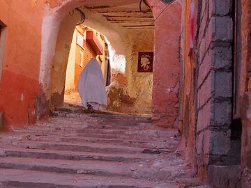 tour viaggi Ghardaia oasi