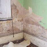 damp survey, HLS Northwest,Lancaster, Morecambe,Lancashire,Cumbia.