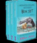 BookBrushImage-2019-10-5-15-5254.png