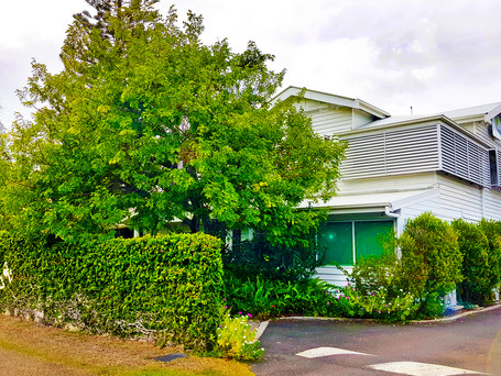 Millbank Medical Practice - Bundaberg (Central Queensland) QLD
