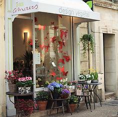 Boutique fleuriste, à nos amours design végétal 15 rue des 3 faucons Avignon