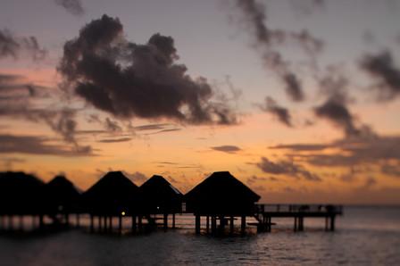Tahiti, 2011