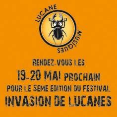 Invasion de Lucanes 2013