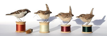 Dinny Pocock bobbin birds.jpg
