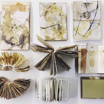Alice Fox Botanical Books.jpg