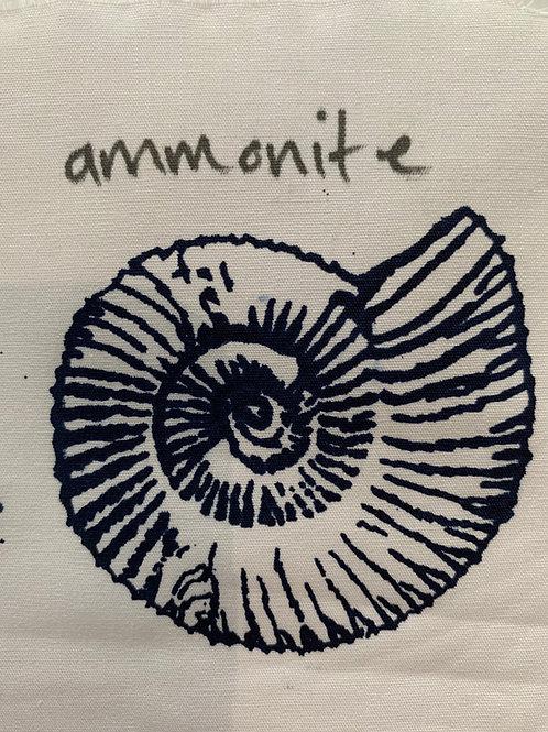 Thermofax A6 Ammonite