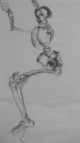 studie skelet, 2005