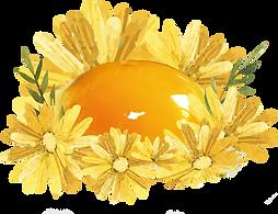 背板egg.png