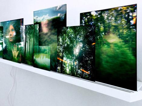 Exposition SALON PARIS-PHOTO Galerie Thessa Herold