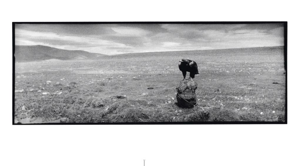 Mongolie, l'esprit du vent