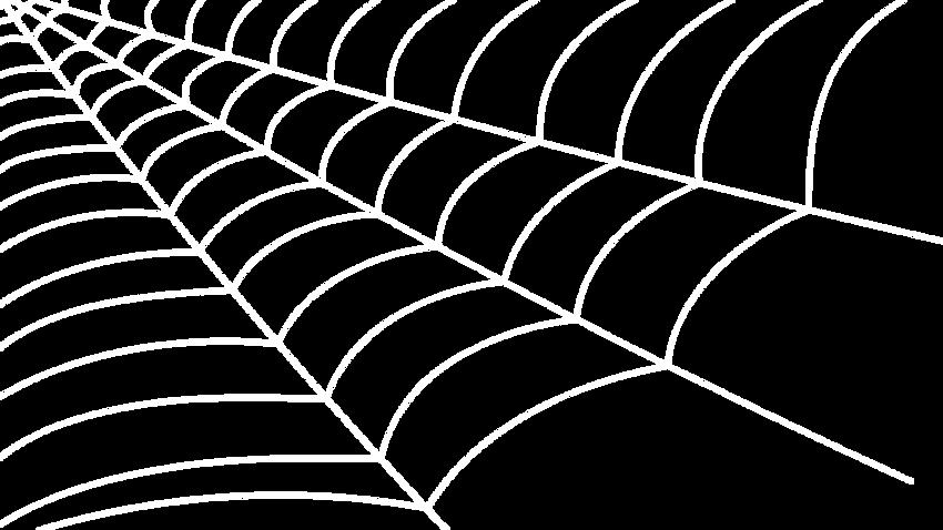 Spinnennetz.png