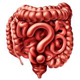 intestin.jpg