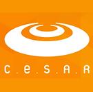cesar-2-240x239.png