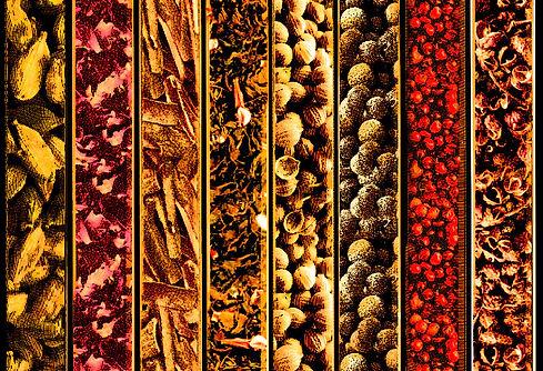 botanicos-color.jpg