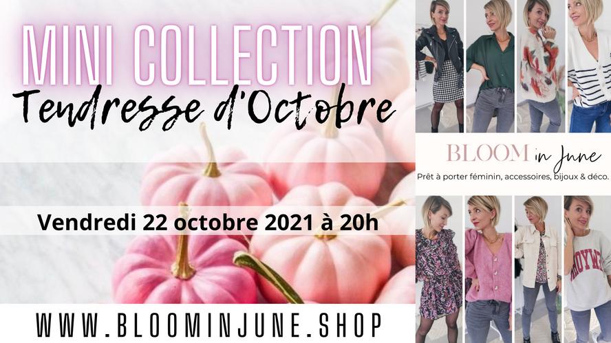 MINI COLLECTION Tendresse d'automne - vendredi 22.10.2021 - mode femme look tendance.png