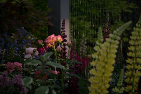 The Stihl Hillier Garden