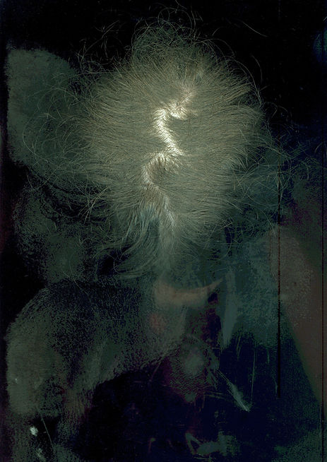 Loredana Denicola | Scanning a body | Hair