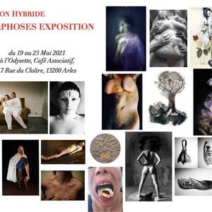MORPHOSES, art exhibition, Arles