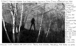 I had a dream & I talked with a tree