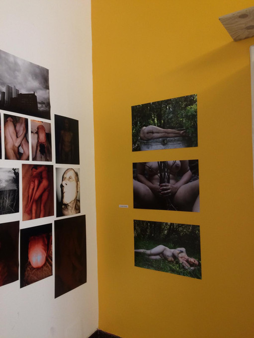 morphoses art exhibition organised by action hybride