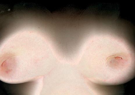 Loredana Denicola | scanning a body | photography