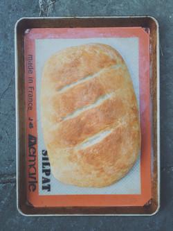 Basic Bread