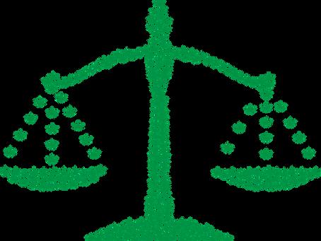 More States Choose Legalization