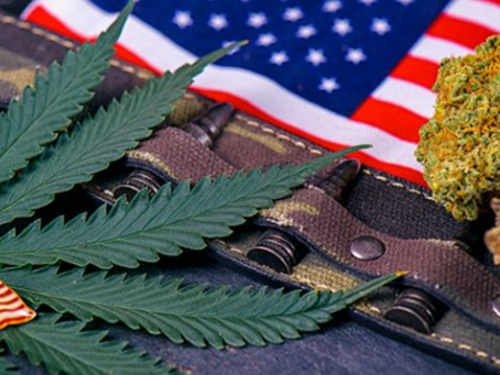Will Veterans be Granted Access to Medical Marijuana Through the VA?
