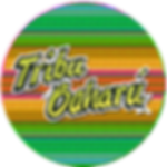 redondo coloresredeslogo tribu 2019.png