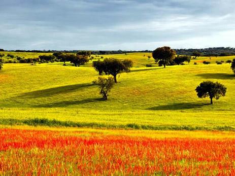 Le 7 zone migliori del Portogallo dove passare la pensione.  Parte II