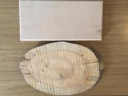Medium Wooden Signs