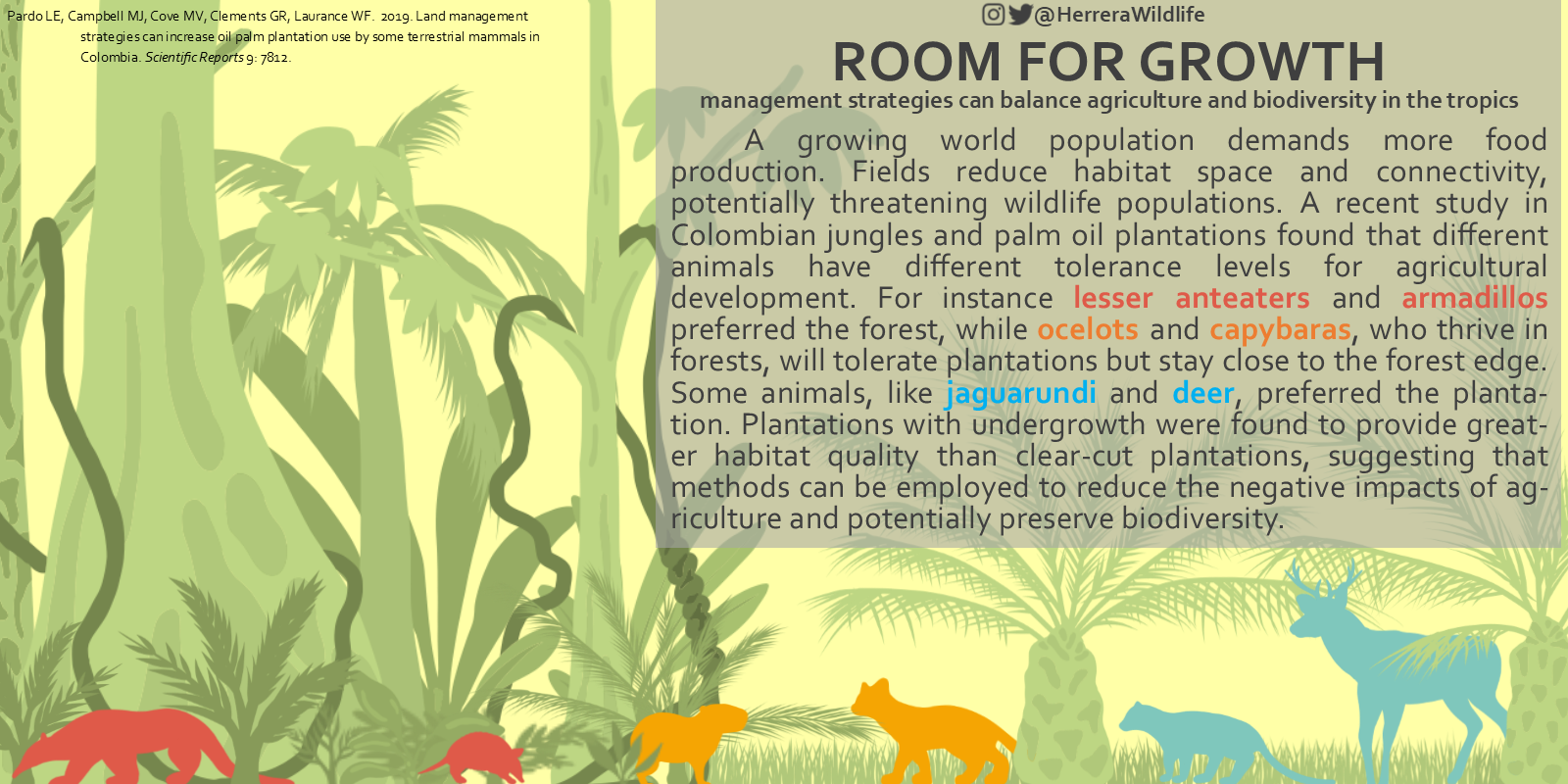 Herrera Wildlife - Palm Oil