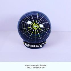 Phyllotaxie - Luce Gaudin