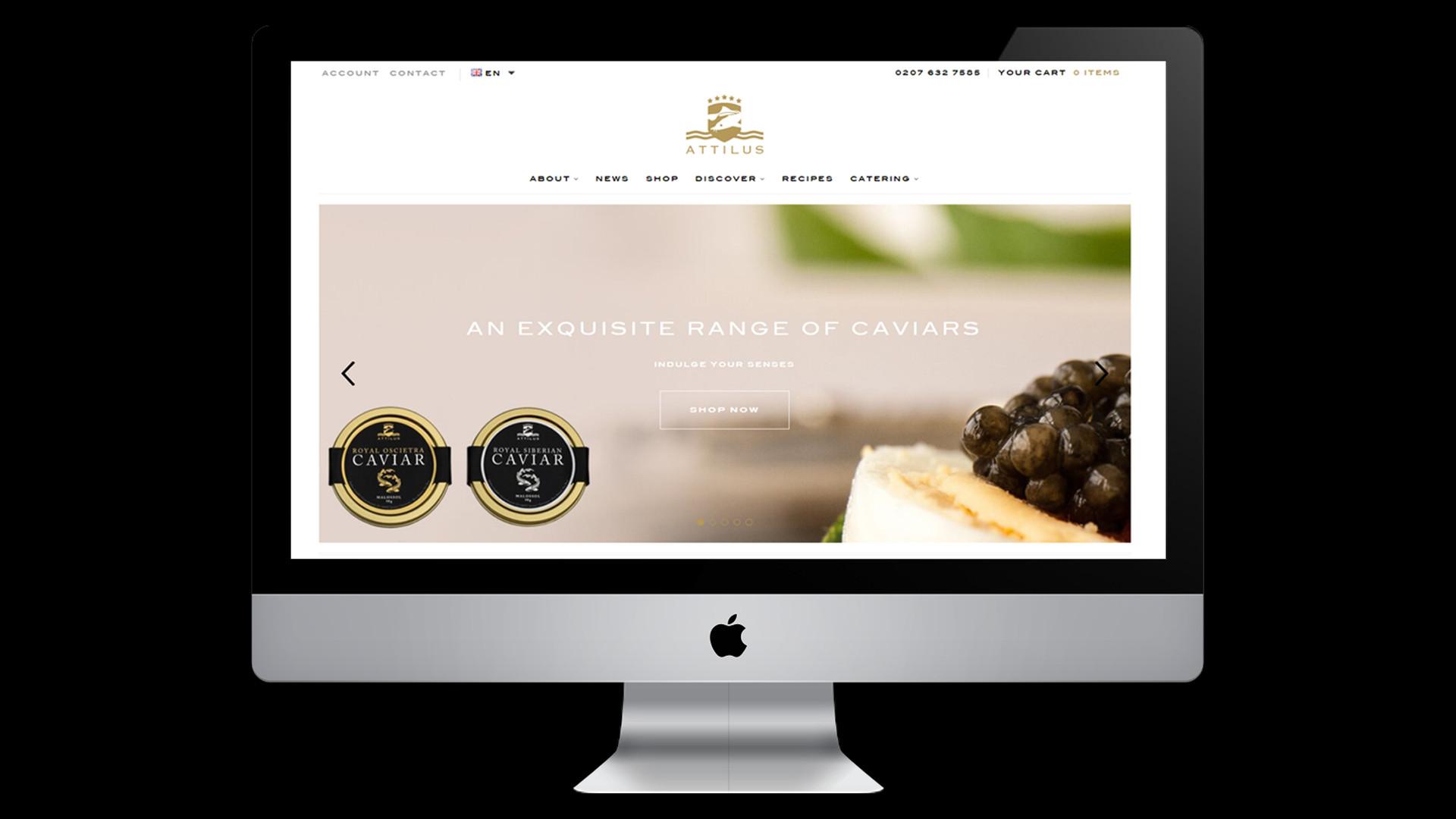 Attilus Website P1.jpg
