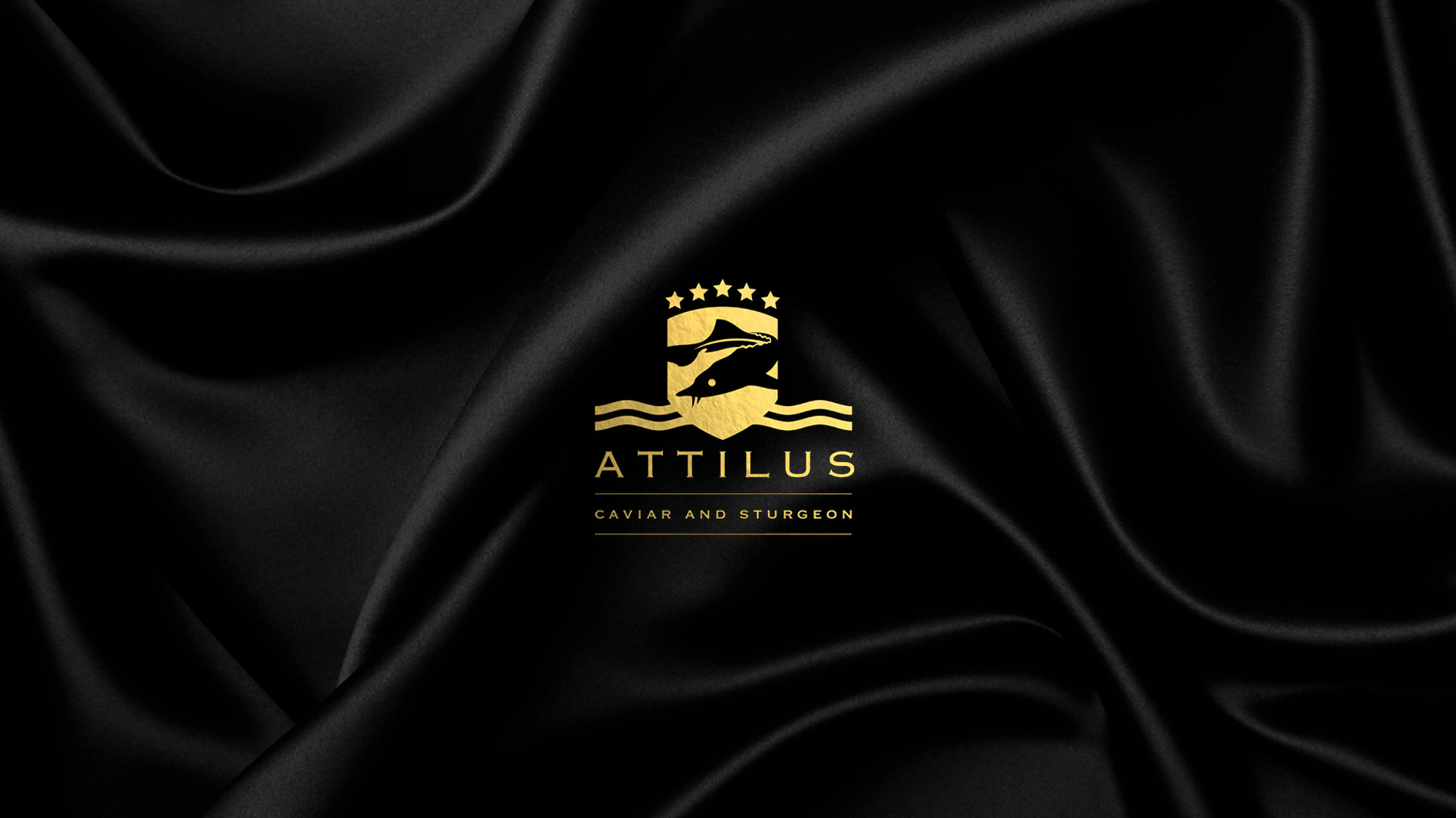 Attilus Logo 2.jpg