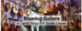 Bluedog Guitars.jpg