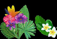 bloom%2520flier%2520(3)_edited_edited.pn