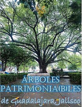 0.0 PORTADAÁRBOLES PATRIMONIALES DE GUAD