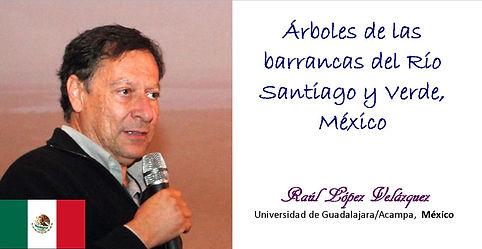 Raúl López Velázquez Cartel 2018.jpg