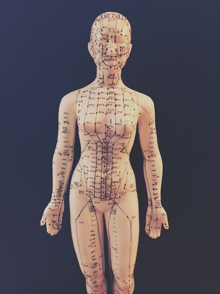 the acupuncture channels as shown on a figure