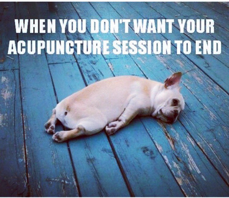When you don't want your acupuncture session to end meme