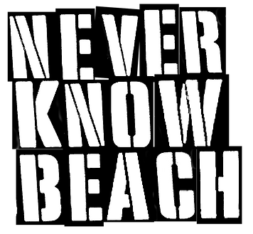 NEVER KNOW BEACH MSTR TITLE.png