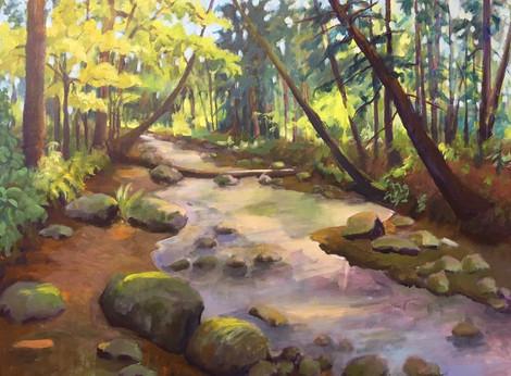 Shaded Creek