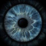 iris-full-29.jpg