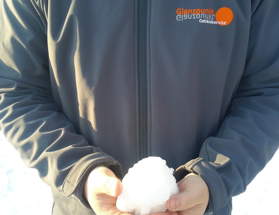 Website Winterdienst 1.jpg